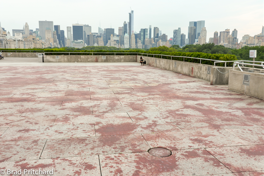 Imran Qureshi's Roof Garden Installation in 2013