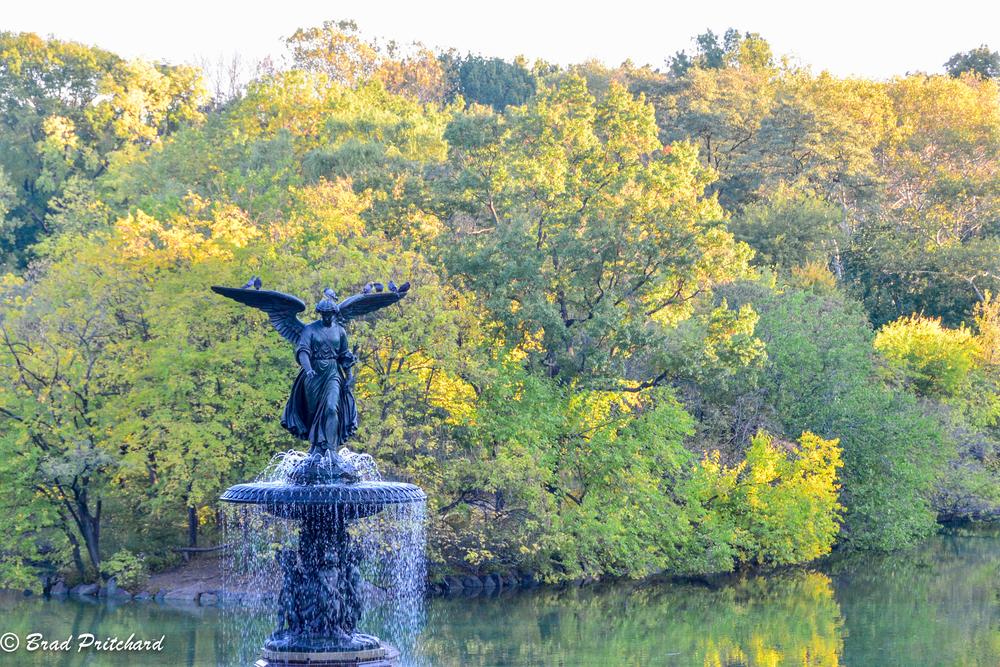 Bethesda Fountain.