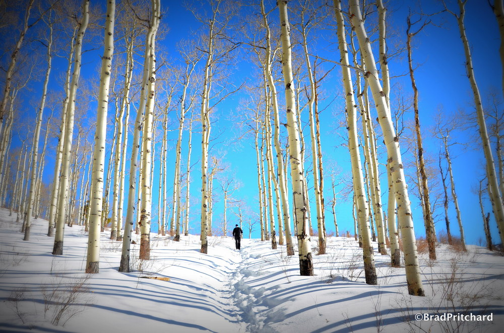 Vail - Backcountry, Colorado, January 2013