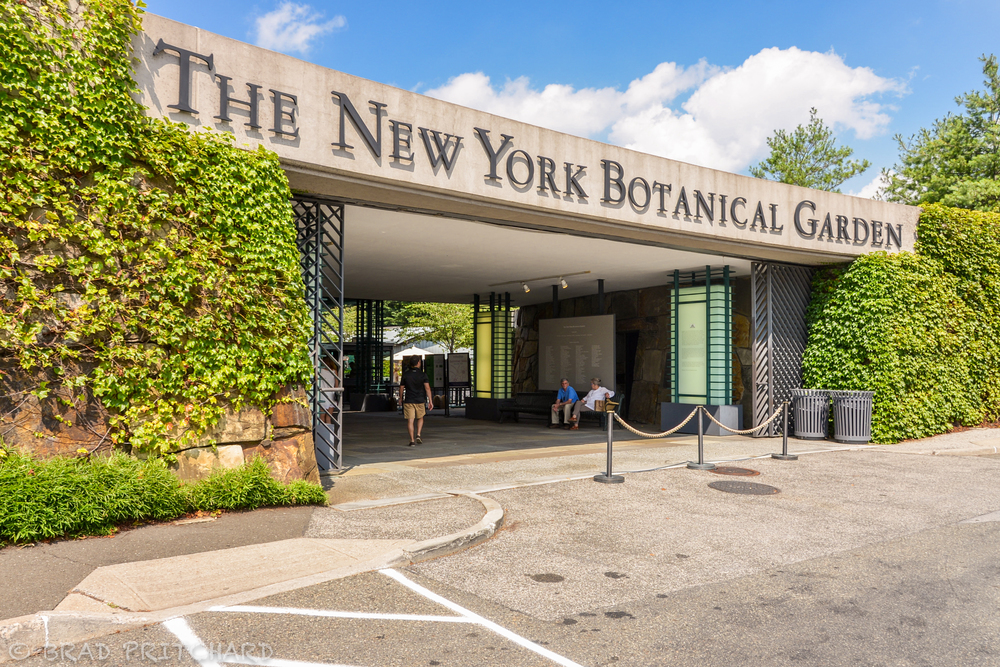 L E Travel Tip The New York Botanical Garden In The Bronx Locally Experienced