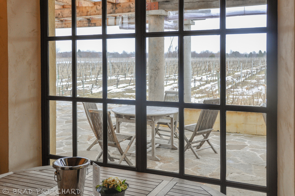 From the inside tasting room to the back patioand vineyard (March 2009).