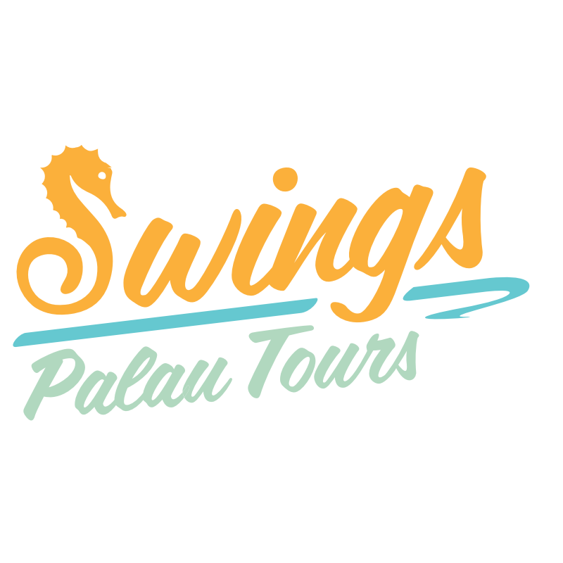 Swings Palau Tours