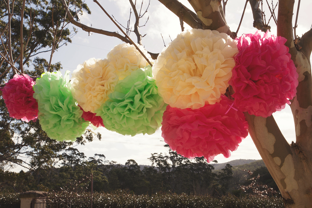 Gorgeous Pom Poms by Fluffy decoration for any occasion