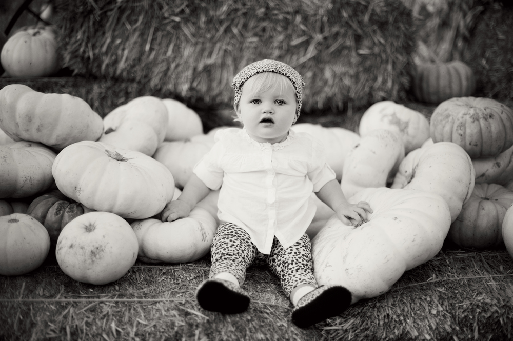 SanDiego-Kids-Portraits-Photography-Pumpkins