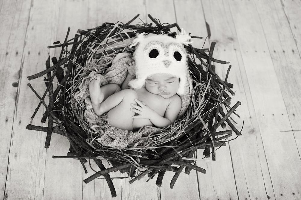 newbornphotogrphysandiego