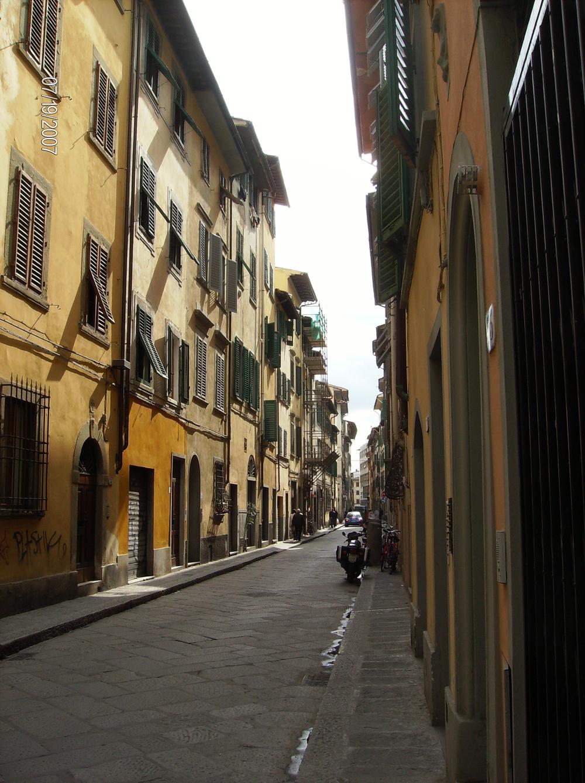 fiorentina-st2.jpg