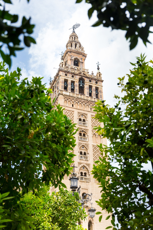 Seville Spain Summer-4.jpg