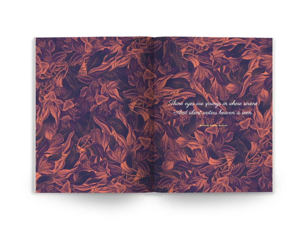 book_horiz_page1.jpg