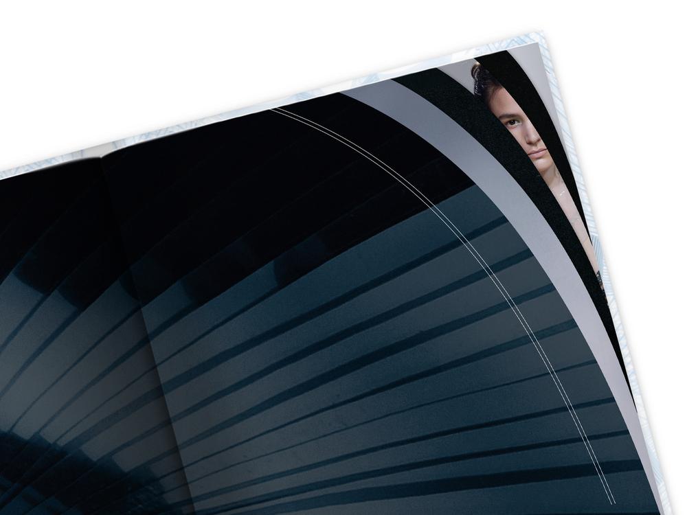 laf_book_details_curve1.jpg
