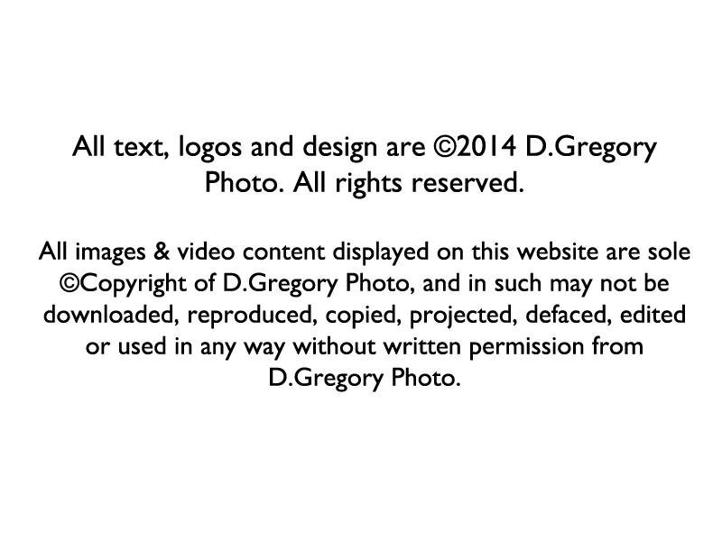Copyright-disclaimer-for-website.png