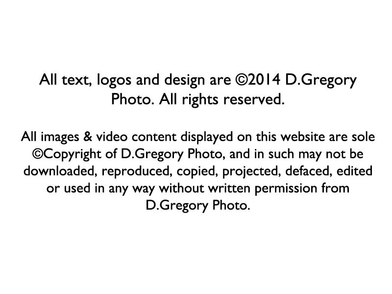 Copyright-disclaimer-for-website.png