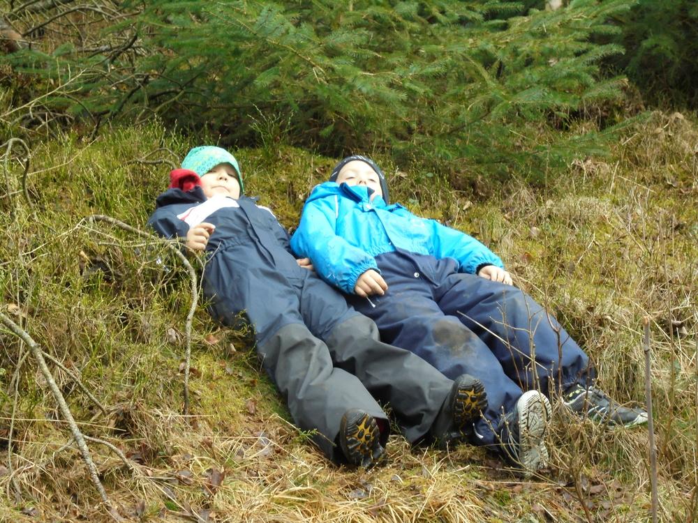 rosa russ bilder og tur til bjørgene skogen 075.JPG