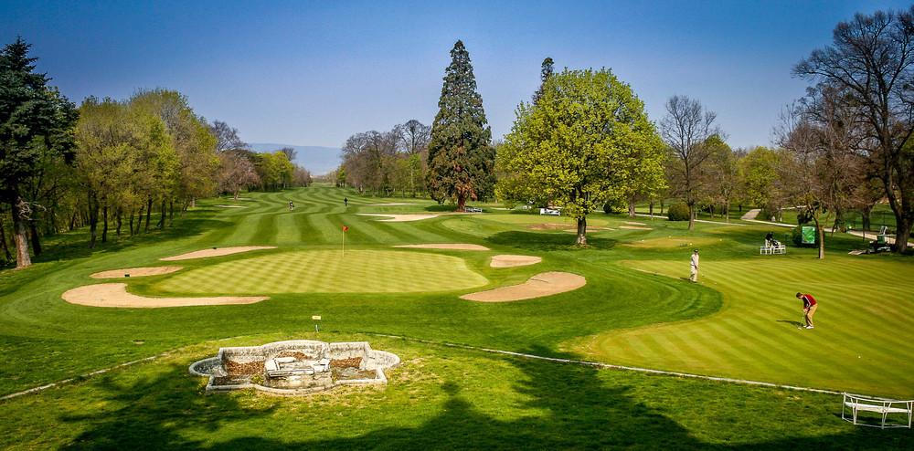 golf 001.jpg