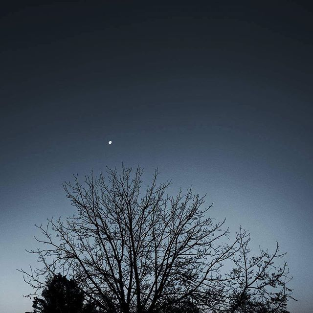 #norlane #beauty #nightsky #neighbourhood #winter