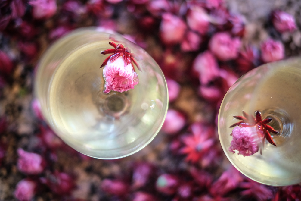 sparkling wine with hibiscus syrup & fresh rosella flower
