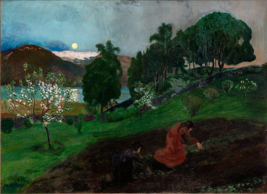 Vårnatt i hagen