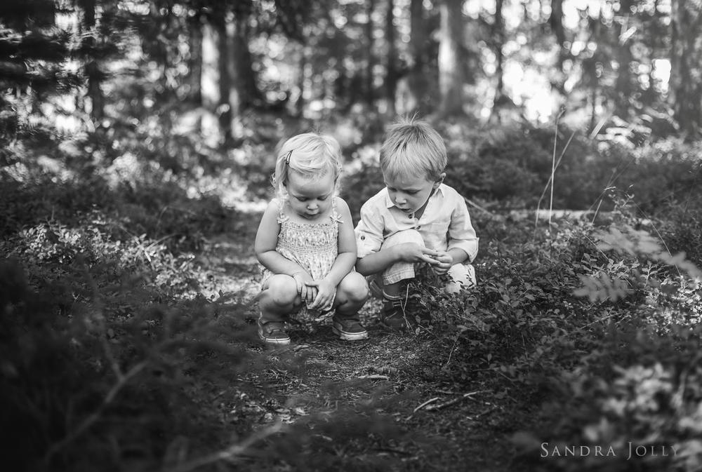 Lisa Ferland-29.jpg