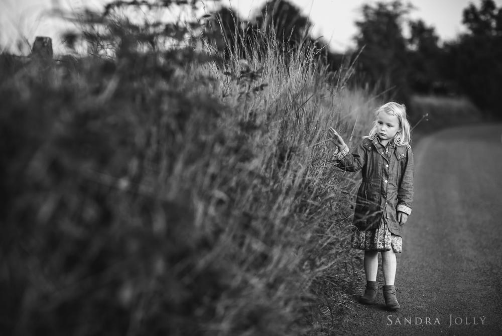 Sandra Jolly Photography