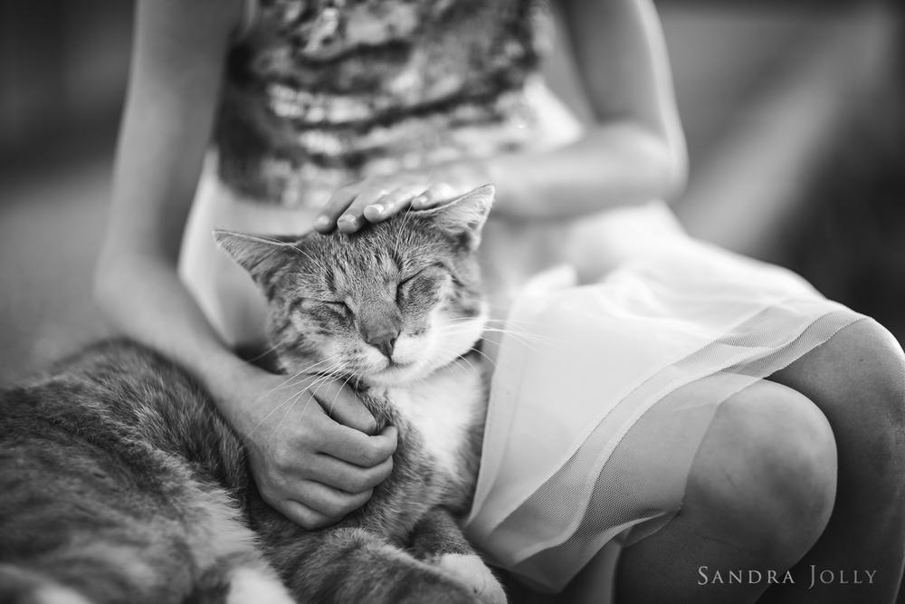 Sandra Jolly Photography-1.jpg