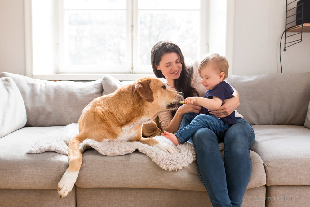 Family-and-pet-at-home-by-lifestyle-photographer-Sandra-Jolly.jpg