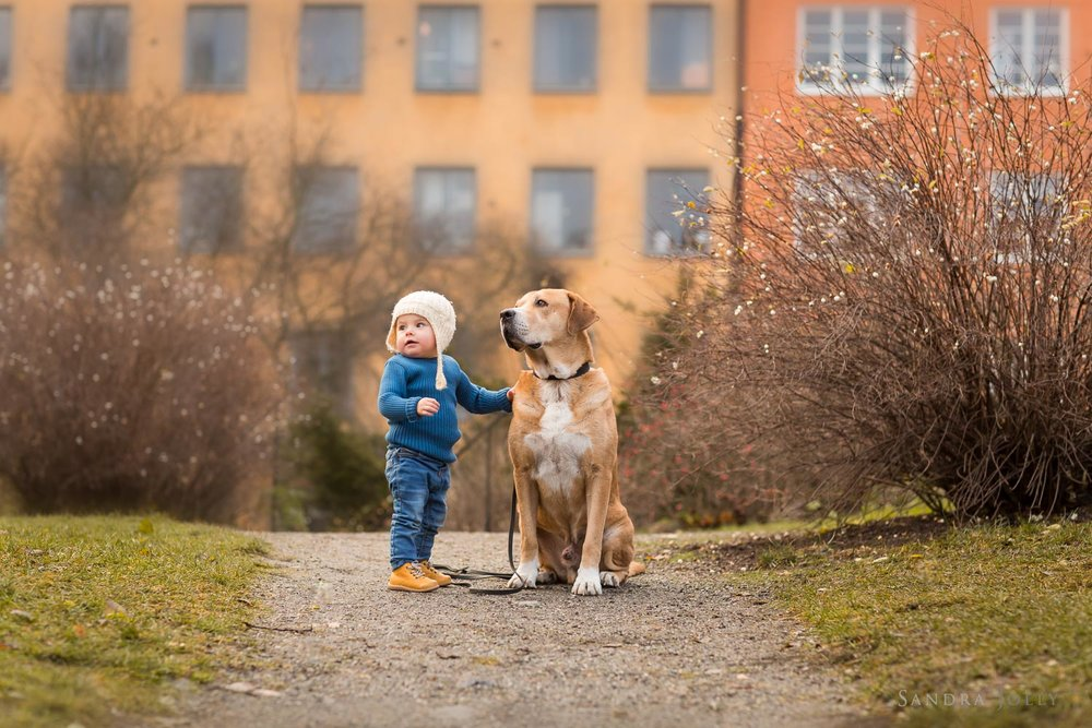 Girl-and-her-dog-by-familjefotograf-Stockholm-Sandra-Jolly-3.jpg