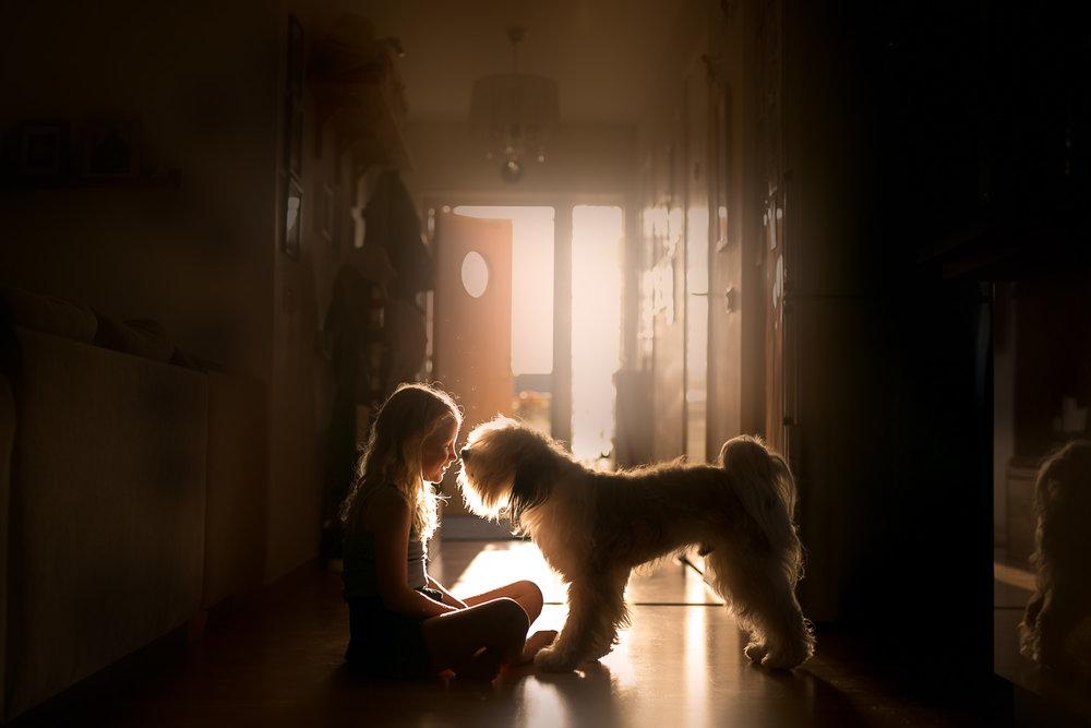 Girl-and-dog-in-backlight-by-bra-familjefotograf-Stockholm-Sandra-Jolly.jpg