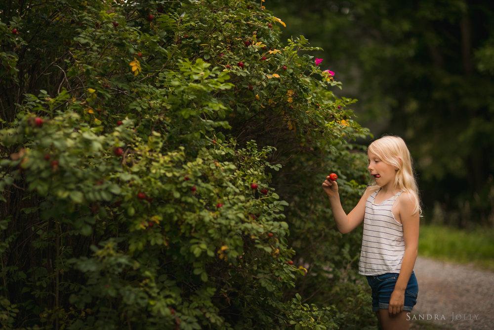 berry-picking-in-sollentuna-by-Sollentuna-fotograf-Sandra-Jolly.jpg