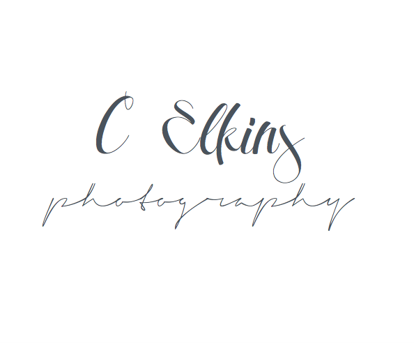 C Elkins Photography :: Wedding & Lifestyle Photographer :: Charlotte NC