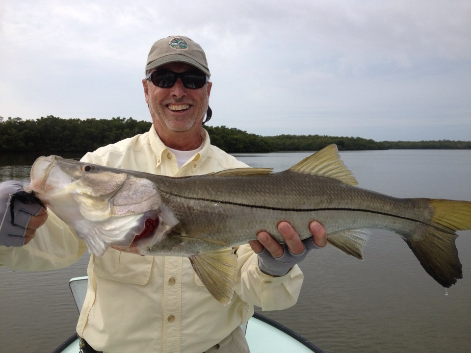 everglades-snook-18.jpg