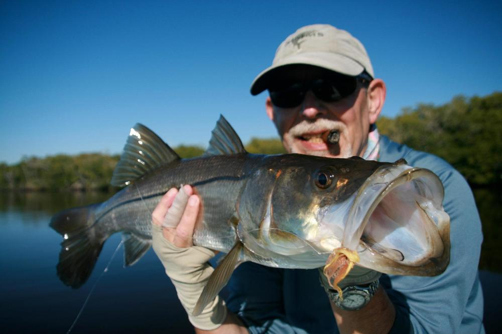 everglades-snook-27.jpg