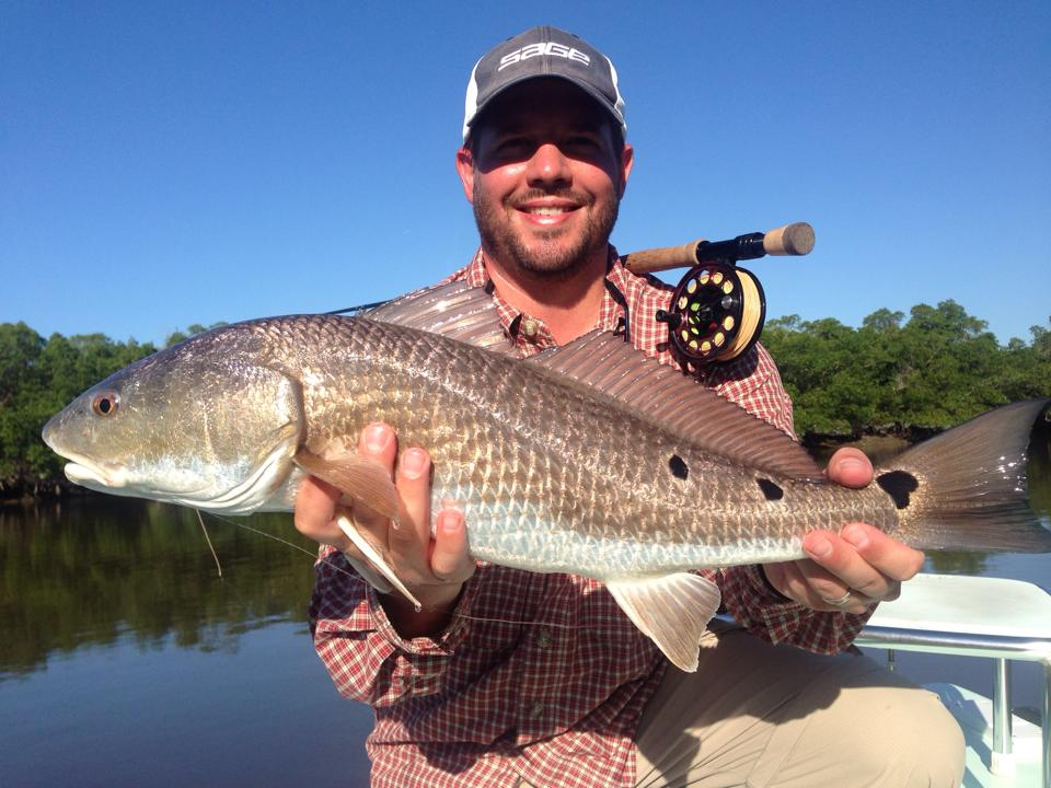 everglades-redfish-1.jpg