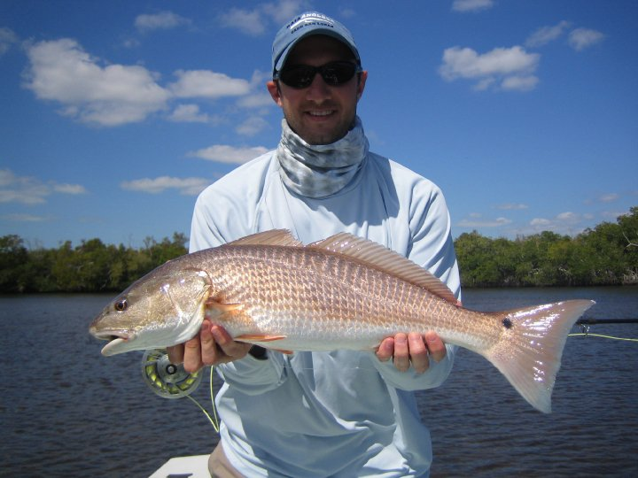 everglades-redfish-11.jpg