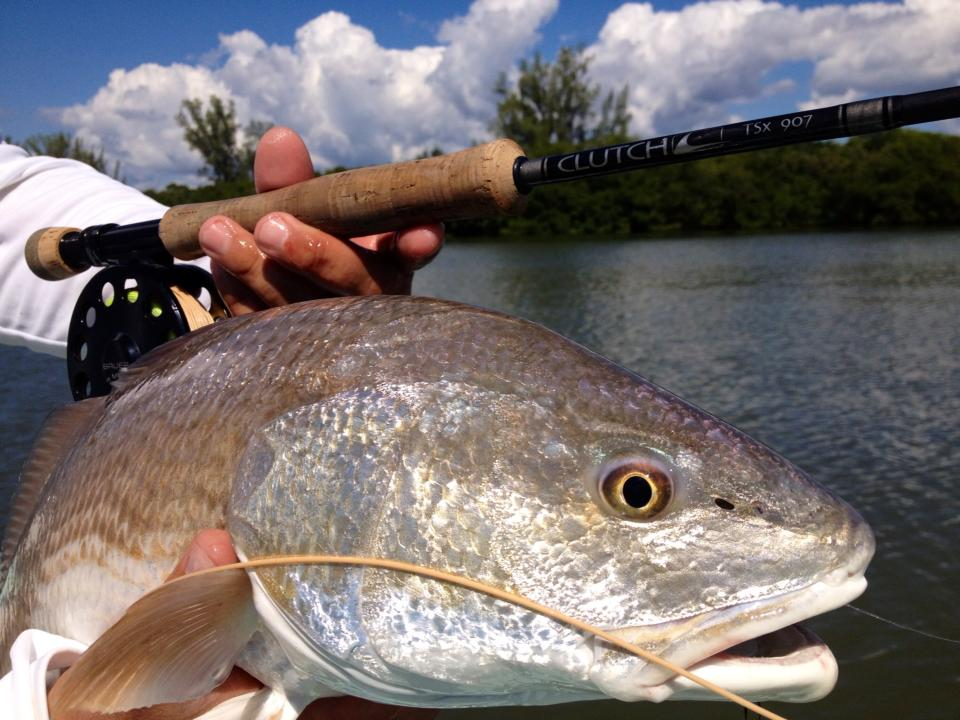 everglades-redfish-15.jpg
