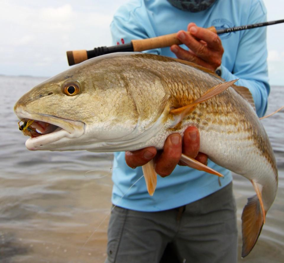 everglades-redfish-17.jpg