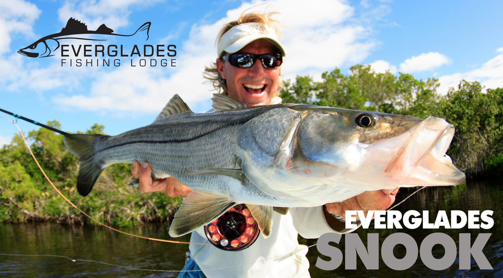 everglades-snook-fishing.jpg
