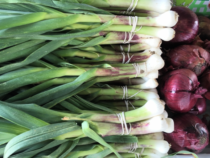 Spring garlic, a special Spring treat, is highly nutritious and cleansing. Also known as green garlic, it's availability doesn't last long. This young garlic has hints of purple as apposed to leeks which are green-white. They are delicious sautéed.  Replace 1 entire green garlic stem and bulb for 1 clove of regular garlic.