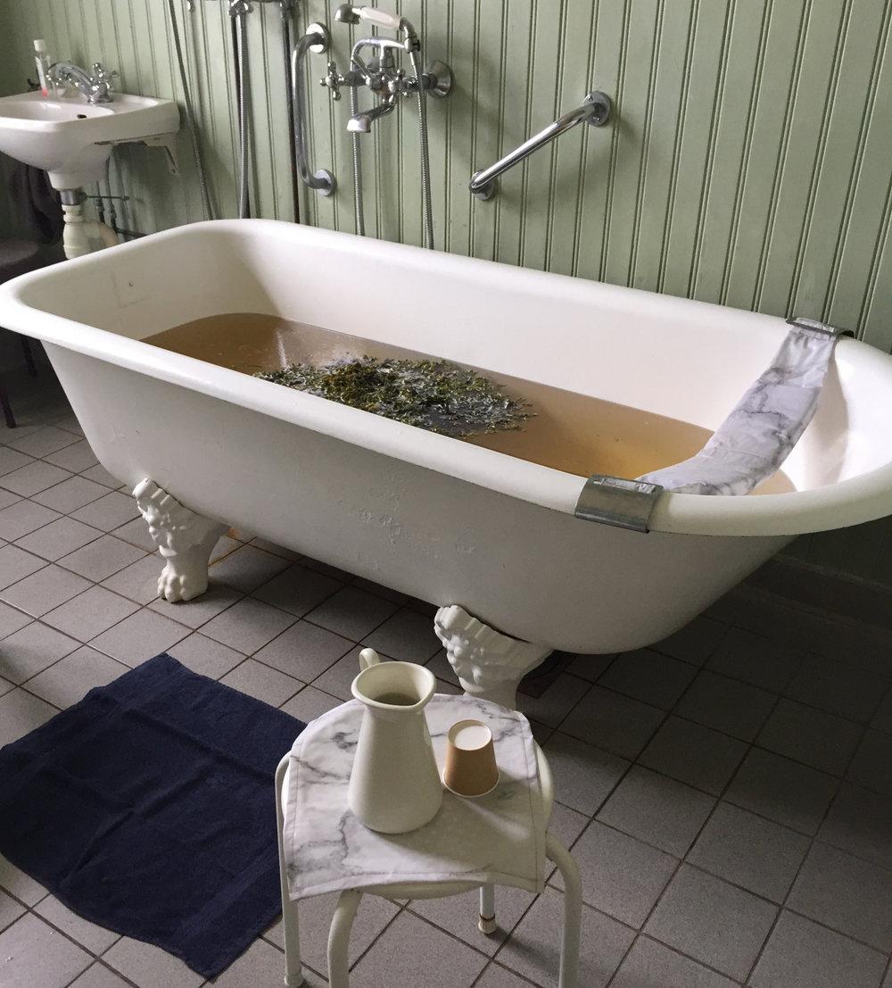 Warmbadhus Seaweed Bath