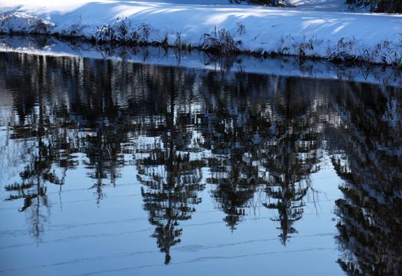 reflectionsm_8173.jpg