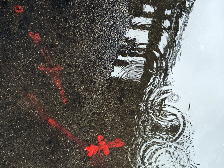 puddle_sm9326.jpg