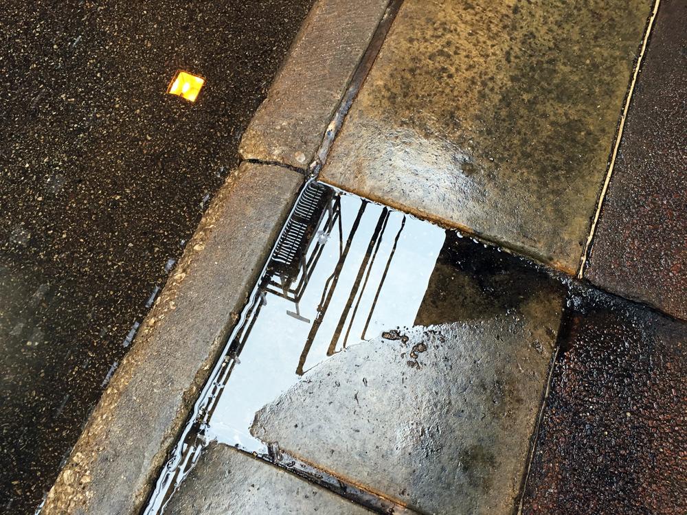 puddle_9425.jpg