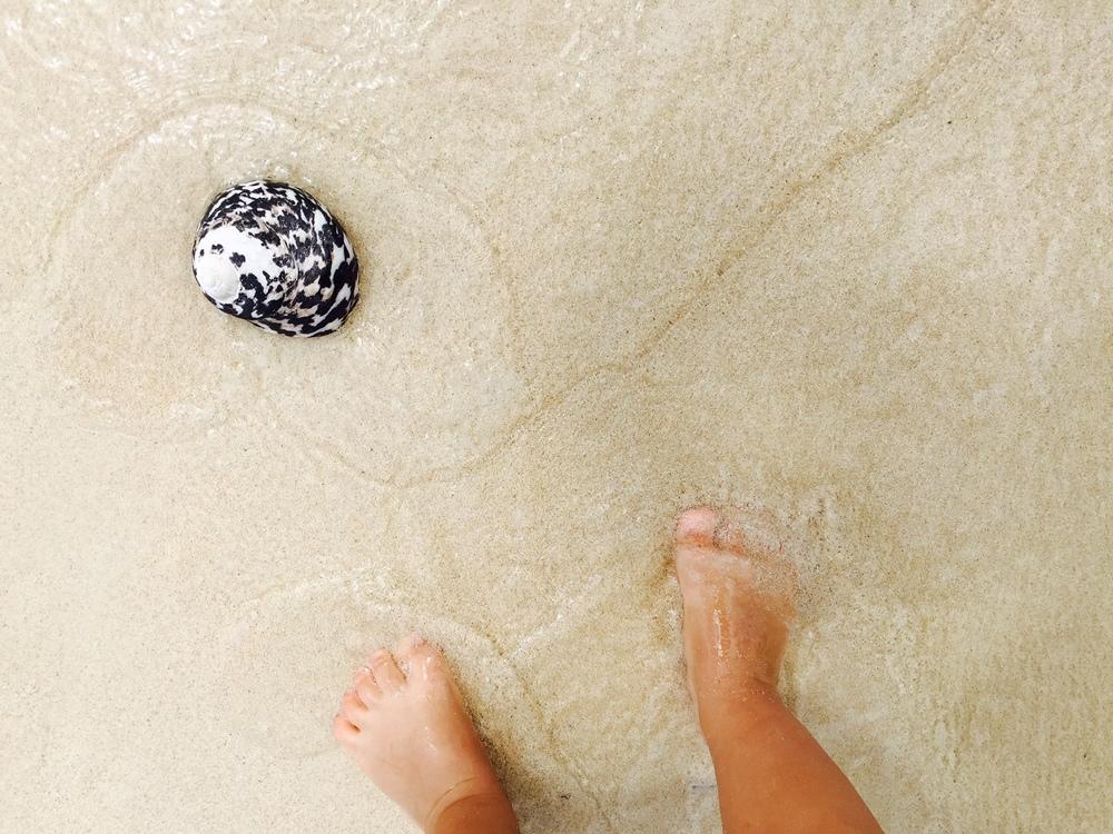 Baby-feet-shell.jpg