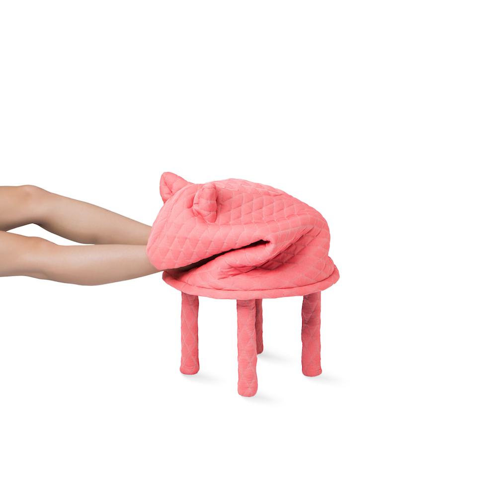 PETSTOOLS-Daisy-legs-sm.jpg