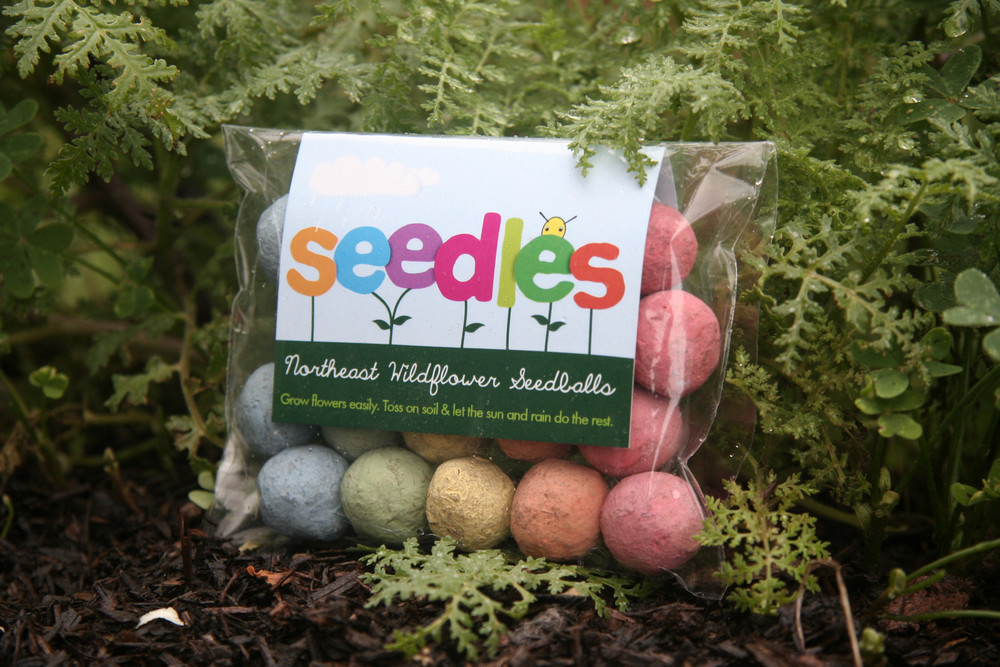Seedbombs_By_Seedles.jpg