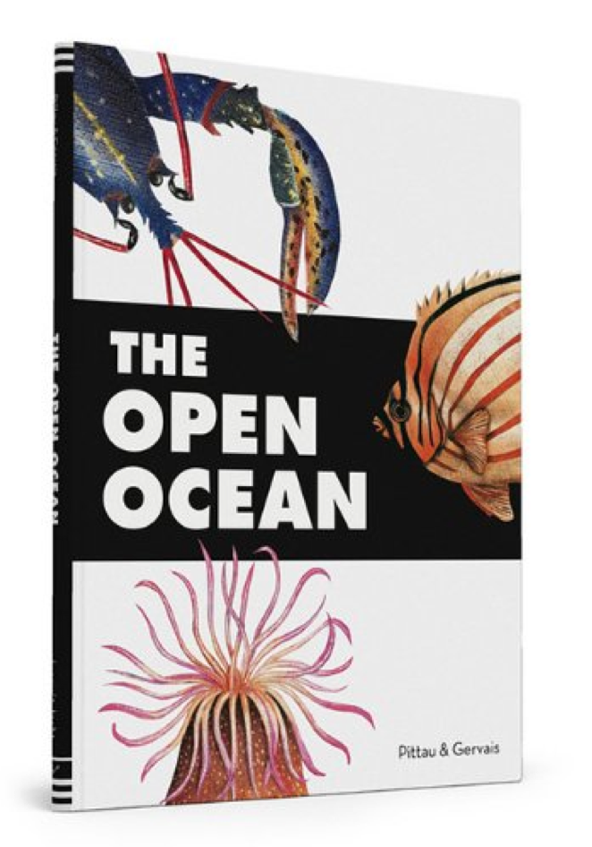 The-open-ocean-Pittau-Gervais-15.png