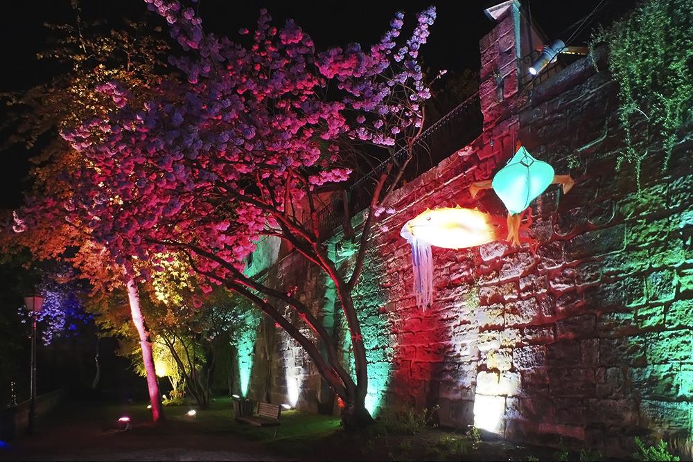 studiodeschutter_Kronach_Lightingfestival_3.jpg