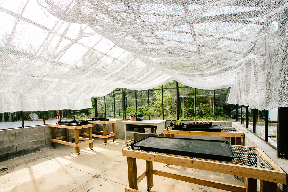This professional greenhouse is a great space for our customers to get their garden started early! Photo courtesy of  ashahphotography