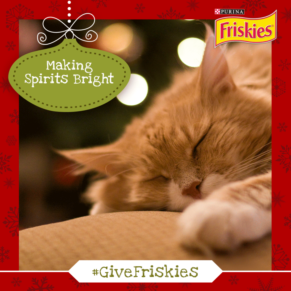 Friskies_Hollywood_Xmas_Parade_Posts2.png