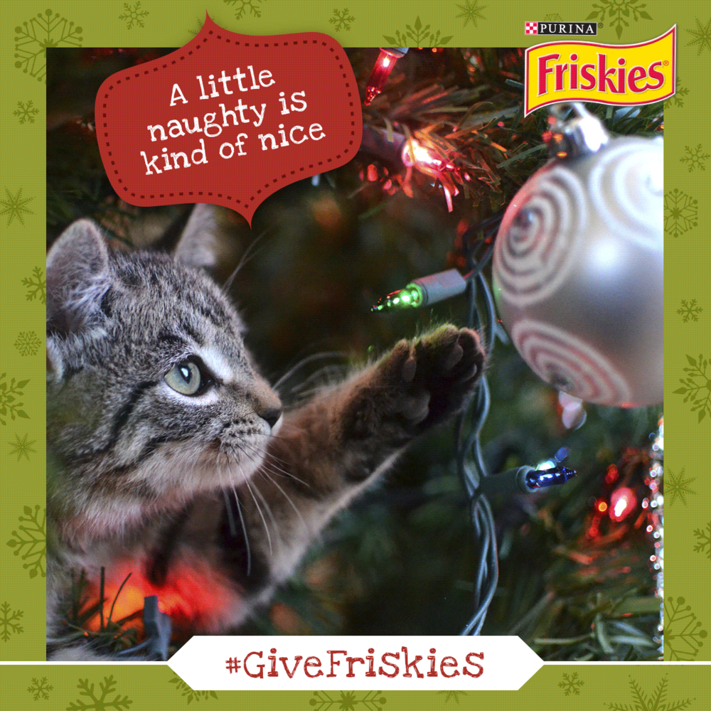 Friskies_Hollywood_Xmas_Parade_Posts3.png