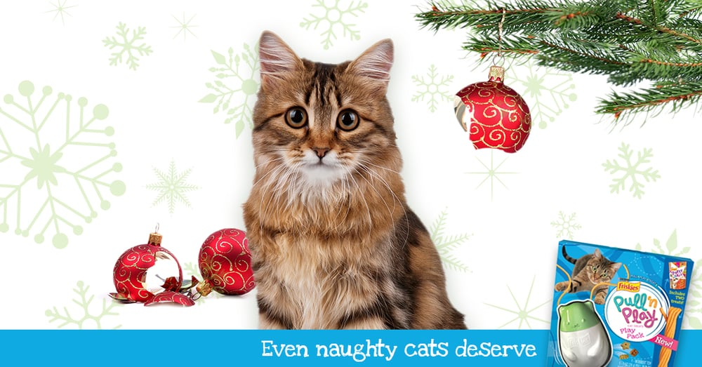 Friskies_Holiday_6-2.jpg
