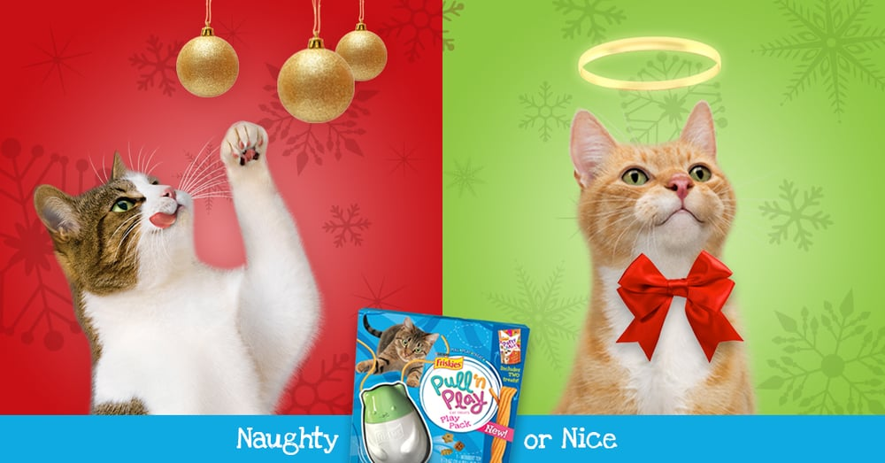 Friskies_Holiday_2.jpg